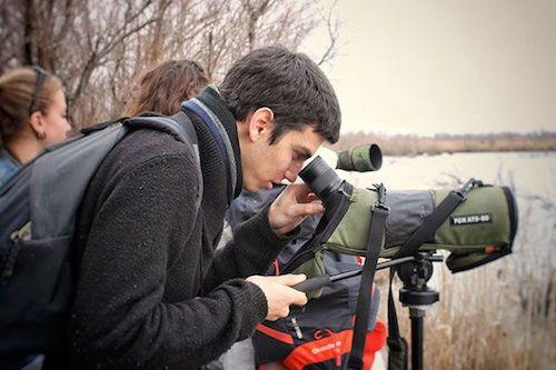 étudiant observant la faune